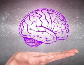 高血压:高血压脑出血病人血压多少正常?脑血管堵塞如何调理?