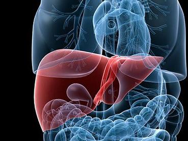 早期肝硬化有什么症状,软肝的药物应该怎么选?早发现,早治疗!