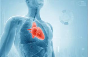 心慌胸闷气短的治疗原则是什么?心慌气短胸闷怎么食疗?