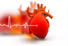 芪苈强心胶囊能降低心率吗?这里有答案