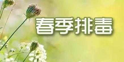 春季怎么养肝排毒